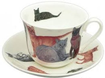 Porcelaine anglaise chat
